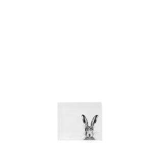 Melamine-Coasters-Sassy-Hare