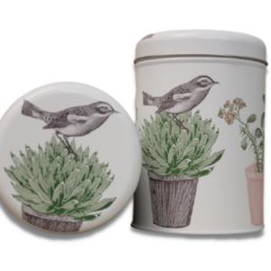 Dose_VogelaufPflanze