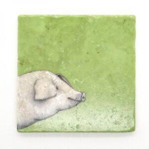fliesen-quadrat-schwein2